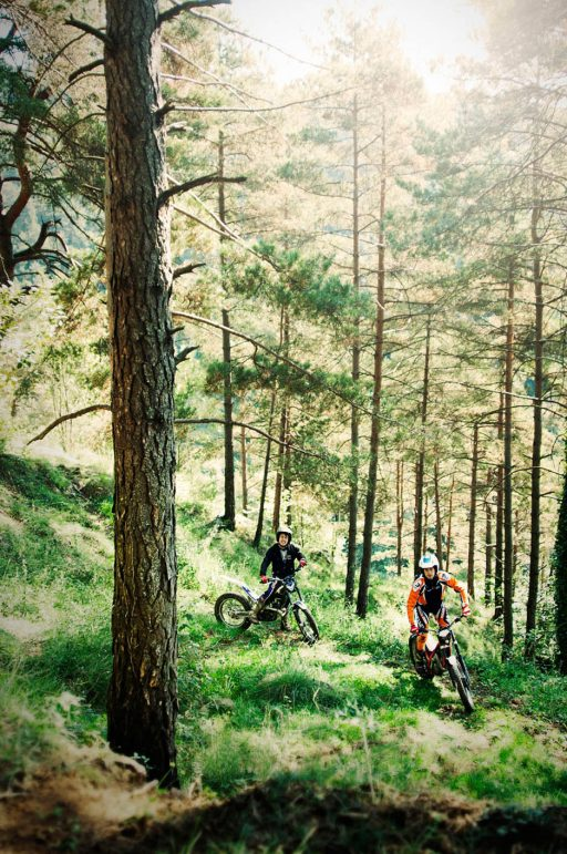 Bikers trial, practicing in a wooded area